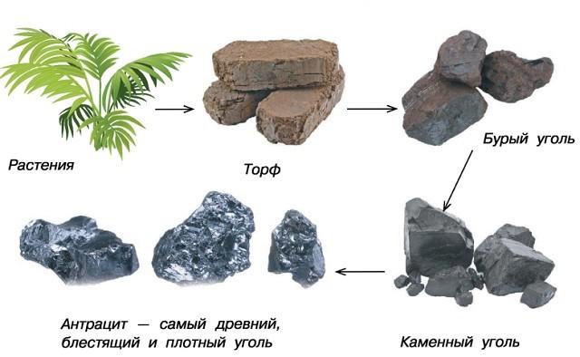 уголь купить